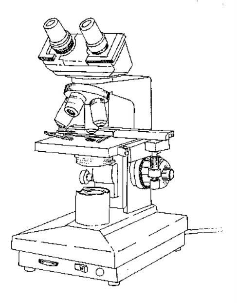 conocimiento y manejo de los microscopios compuesto y estereoscopico