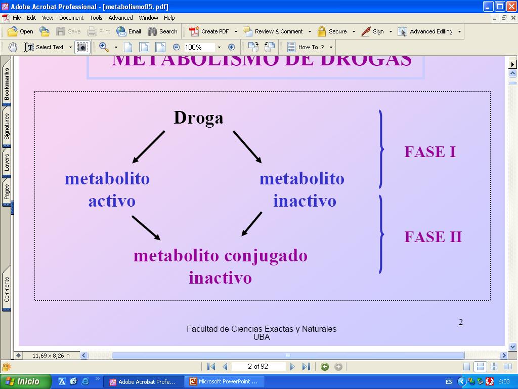 Aprender cómo metabolismo basal calculo online